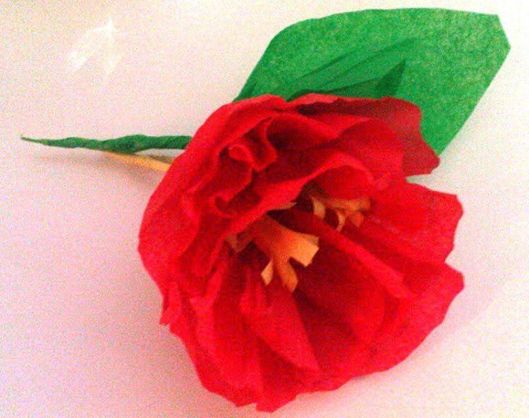 33 Cara Membuat Bunga Dari Kertas Koran Karton Hvs Tisu Kado
