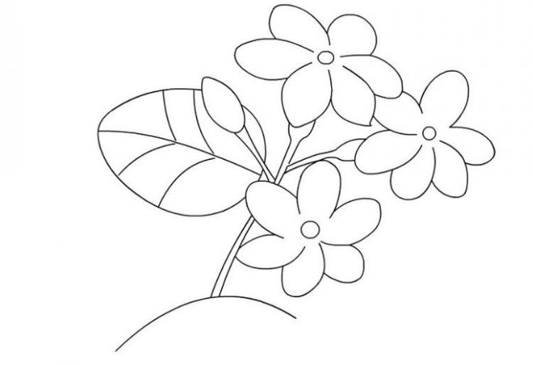 Unduh 68+ Gambar Bunga Sketsa Paling Baru Gratis