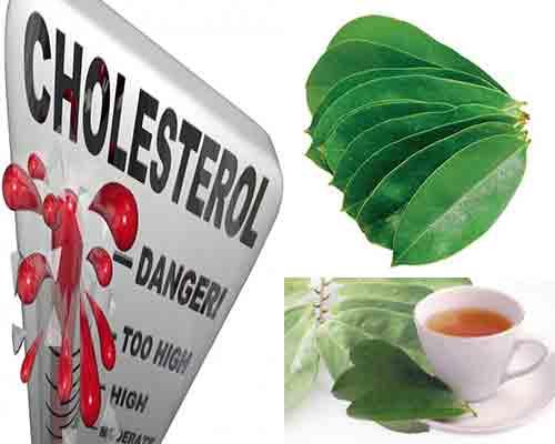daun sirsak untuk lindungi anda dari kolesterol