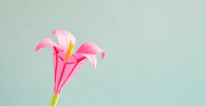 Gambar Bunga Dari Kertas Origami Cara Melipat Mawar Kertas