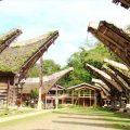 rumah adat sulawesi selatan yang unik