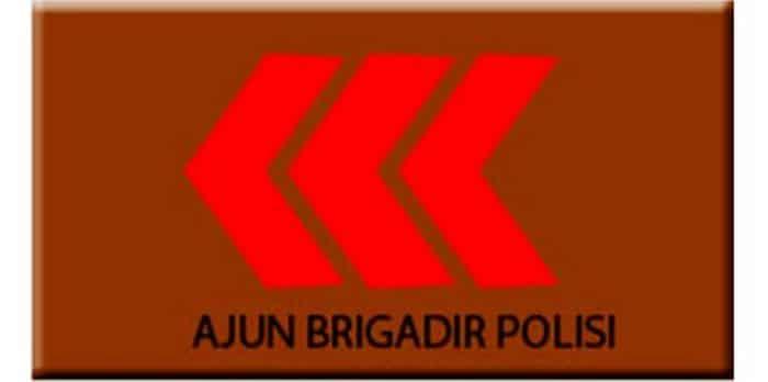 abripol (ajun brigadir polisi)