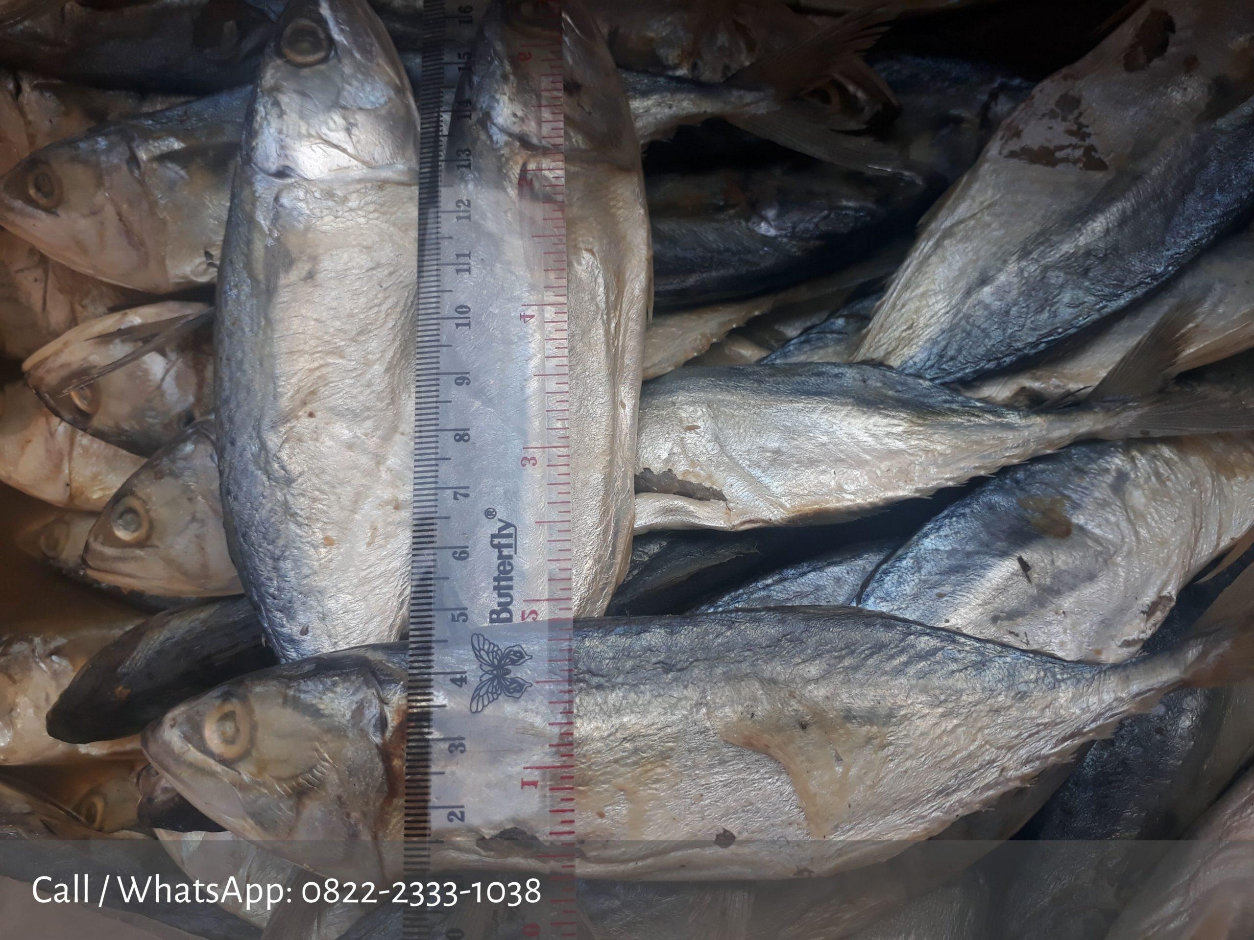 ikan asin peda putih
